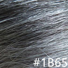 #1B, 65% gray