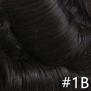 #1B Black Brown